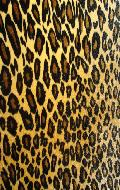 leopardfurred